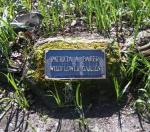 Patricia Baker Memorial Wildflower Garden